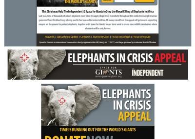 ElephantsAppeal