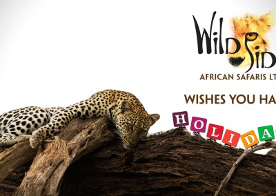 WildSideAfricanSafarisLtd_Greetings2013