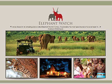 Elephant Watch Portfolio